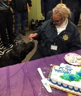 justice eating cake