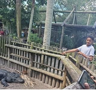 Youth at alligator farm