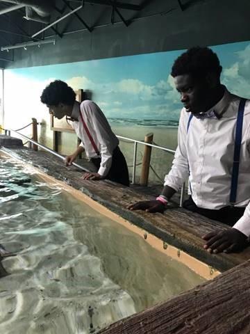 ami youth at aquarium